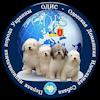ОДИС-Одесская Домашняя Идеальная Собака